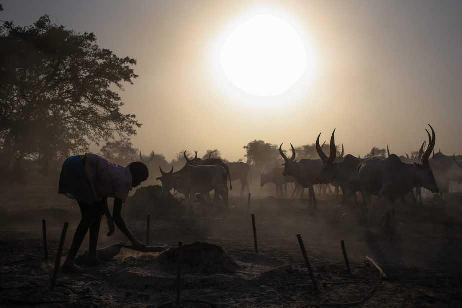 personas negras Sudán
