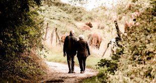 sistema de pensiones español