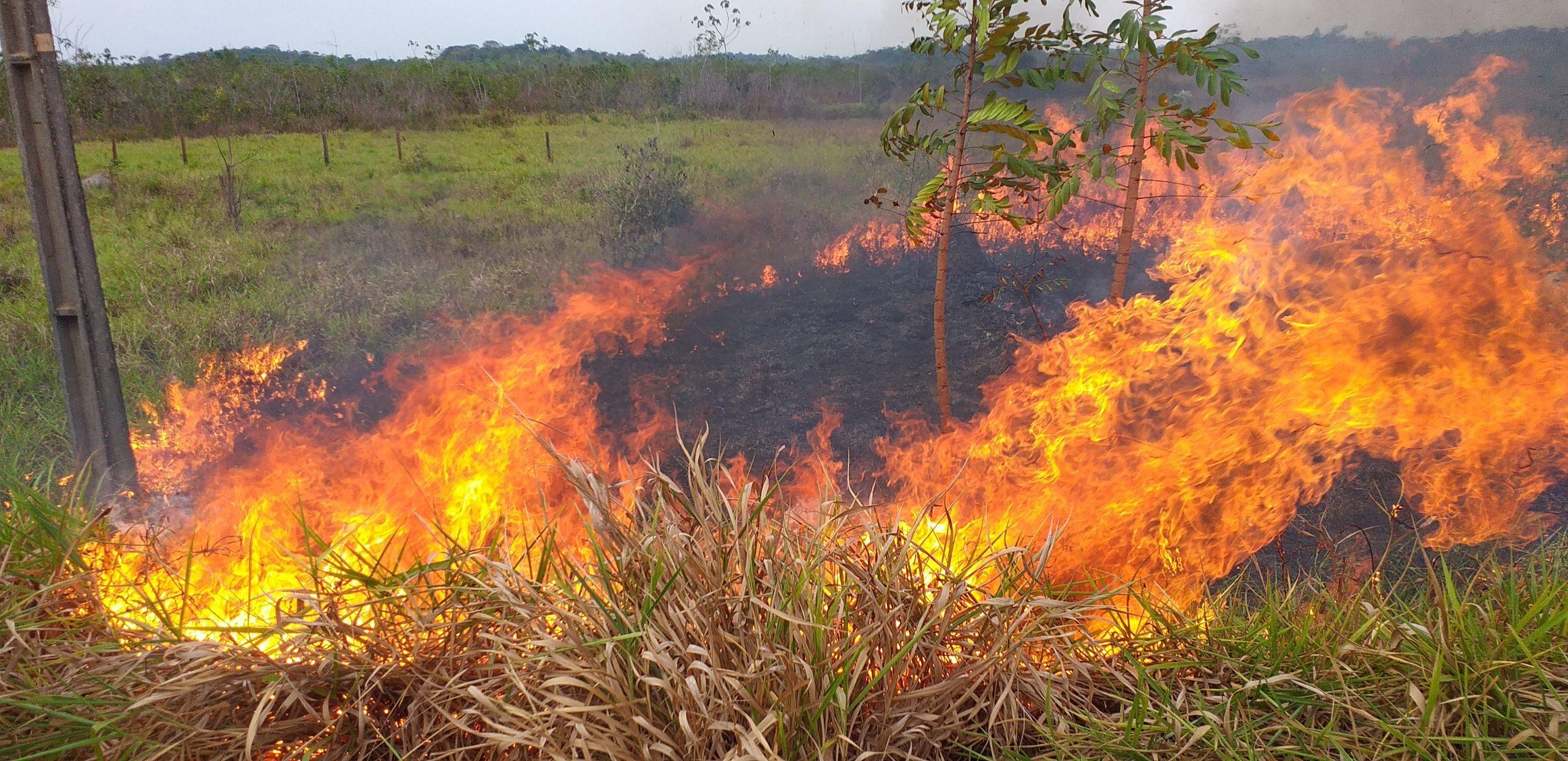 Incendio Amazonia