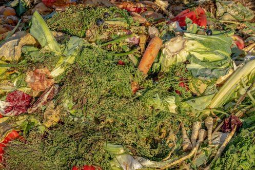 En España se desecharon  1.352 millones de kilos de comida en 2019