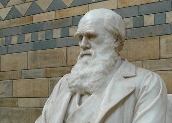 Charles Darwin Museo de Londres