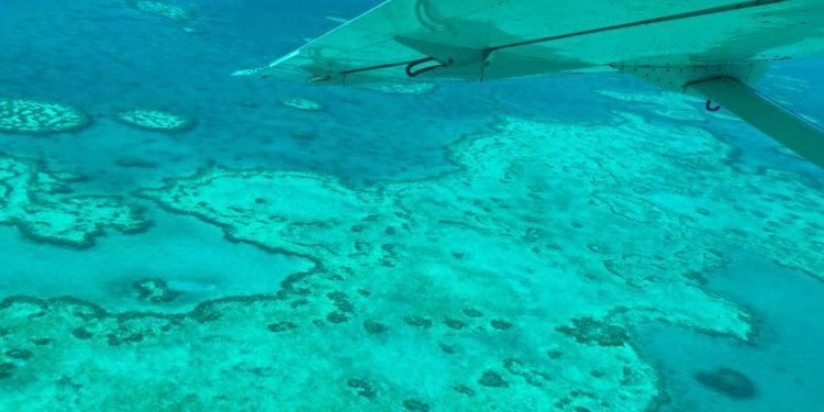 Vista aérea de la Gran Barrera de Coral en Australia / ARC Centre of Excellence for Coral Reef Studies