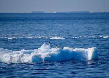 calentamiento Antártico