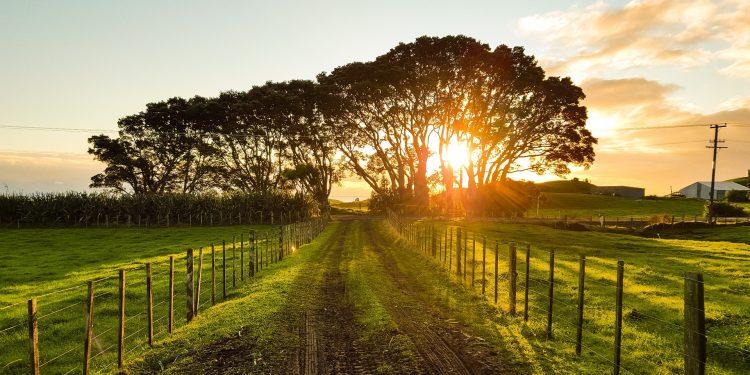 Paisaje campo agrícola