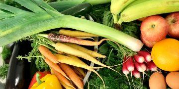 Una dieta basada en el beneficio del planeta es una de las mejores y más rápidas acciones para combatir la pérdida de biodiversidad y el cambio climático / Imagen de David Greenwood-Haigh en Pixabay