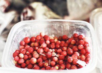 Proteger alimentos / Imagen de lloorraa en Pixabay