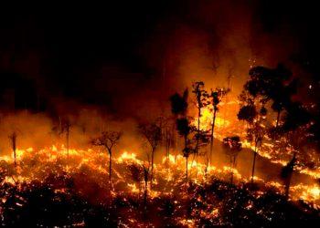 Como consecuencia del cambio climático, las temperaturas aumentan y los incendios se hacen cada vez más potentes / REUTERS