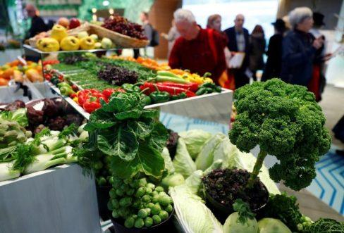 Hay componentes carcinóginos en distintos alimentos / REUTERS
