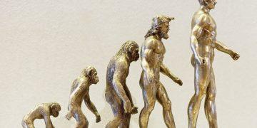 Teoría evolución humana de Charles Darwin