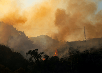 El incendio forestal Bond Fire continúa ardiendo junto a las líneas eléctricas cerca del Cañón Modjeska, California