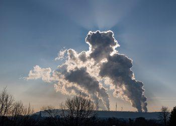 Plantas CO2