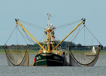 Cuotas de pesca