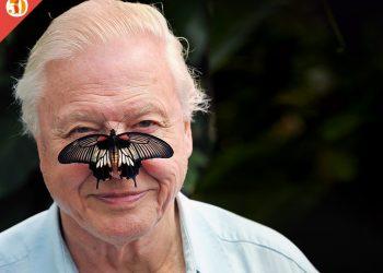 David Attenborough, Premio Madre Tierra / Edición 2.274 de Cambio16