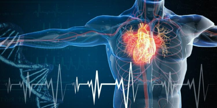nanomedicina contra infarto