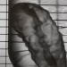 Readily3D y la Escuela Politécnica Federal de Lausana han desarrollado un sistema que permite diseñar un páncreas bioimpreso en apenas 30 segundos