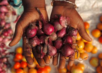 El cambio climático amenaza un tercio de la producción mundial de alimentos. REUTERS