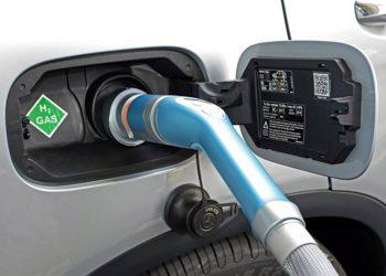 WWF hidrógeno bajo en carbono