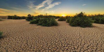 WWF España desertificación