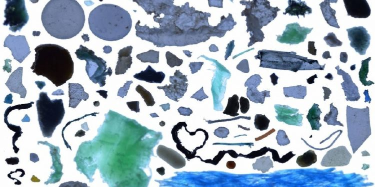 80% basura océanos