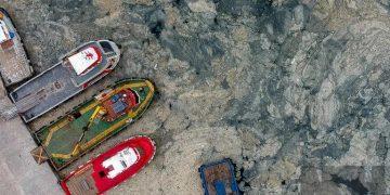 """Los llamados """"mocos marinos"""" son causados por las altas temperaturas del mar derivadas del cambio climático y la contaminación"""