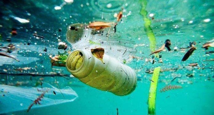 Estos microrobots autopropulsados pueden nadar sobre los microplásticos y descomponerlos