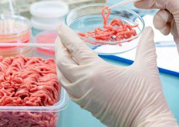 Muchas empresas del sector cárnico están tratando de producir carne artificial en masa, hecha a partir de células cultivadas de animales.