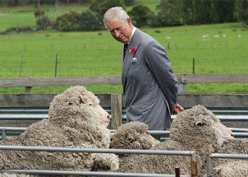 El príncipe Carlos está muy preocupado por cómo la agricultura industrial está arruinando el planeta