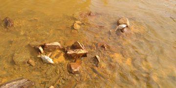 aguas ácidas de mina