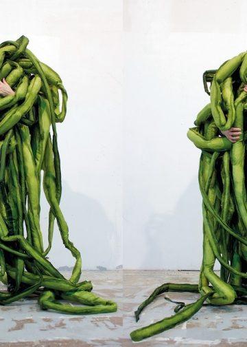 encuentro vegetal