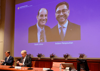 Julius y Patapoutian fueron galardonados con el Premio Nobel de Medicina por sus descubrimientos sobre los receptores de temperatura y tacto