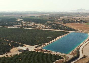 WWF denuncia saqueo de agua