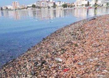 Situación del Mar Menor