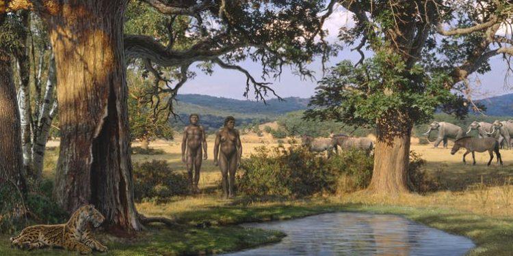 primeros humanos